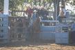Mareeba2019-0108.jpg