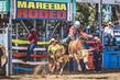 Mareeba2019-9661-2.jpg