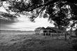Black-and-White-Barn(1).jpg
