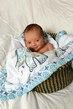 Newborn and Baby Photos 002.jpg