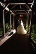 Wedding-Bride and Groom 003.jpg
