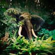 Elephant surprise.jpg