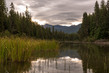 Priest Lake Lionshead-6460.jpg