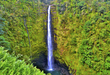 AKAKA FALLS Hawaii State Park.jpg