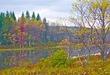 BLACKWATER FALLS West Virginia State Park - Pendalton Lake.jpg