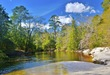 BLACKWATER RIVER Florida State Forest - Sandbar.jpg