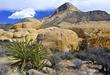 RED ROCK Conservation Area (BLM) - Sandstone Quarry.jpg