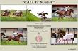 CALL IT MAGIC.jpg