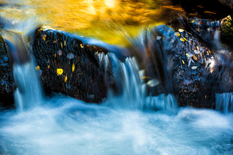 Against All Odds.jpg :: Colorful autumn leaves cling to the rough rocky surfaces, refusing to be swept away by the brook's rapid movement.