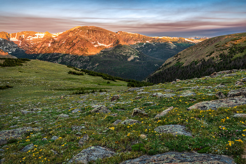 Alpine Dream.jpg :: Old Man of the Mountain dots the tundra while distant peaks greet the morning light. Rocky Mountain National Park, Colorado, USA.