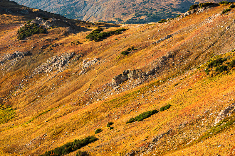 Autumn Saddle.jpg :: The autumn colors of Colorado's tundra seem to glow in the early morning light while a bull elk bugles in the valley far below. Magical fall in the mountains.