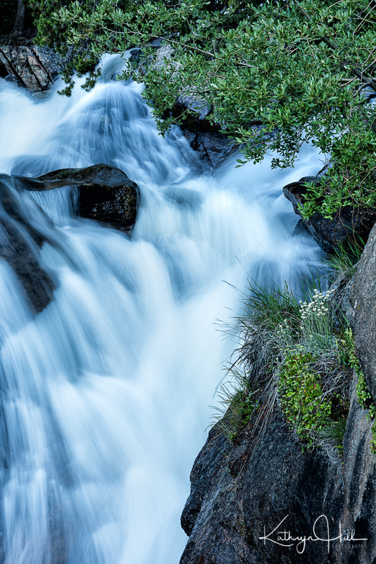 Chasm Beginnings.jpg :: The Fall River thunders through the forest as it becomes Chasm Falls, Rocky Mountain National Park, Colorado