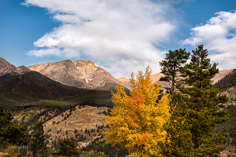 Ypsilon Autumn.jpg :: Mt. Ypsilon, at 13,520' above sea level, enjoys the presence of her autumn neighbor.