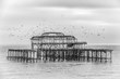 Brighton Pier unsigned.jpg