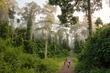 Danum Valley Borneo.jpg