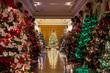 2019-Christmas-At-Capitol-1.jpg