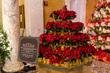 2019-Christmas-At-Capitol-4.jpg