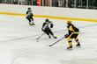 2019-State-Hockey-CAPS-LAKERS-9(1).jpg