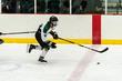2019-State-Hockey_CAPS-RANGERS-1021.jpg