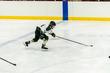 2019-State-Hockey_CAPS-RANGERS-1027.jpg