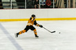 2019-State-THockey_THUNDER-LAKERS-1002.jpg