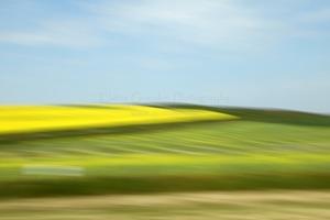 Prairie Abstract