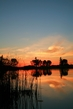 pond sunset6.jpg