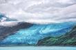 ALASKA Glaciar_99_295.jpg