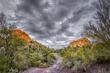 Bulldog Canyon 1731(1).jpg