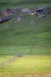 Grass Fence 761.jpg