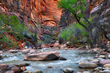 Zion Virgin River 4556 Limited Edition Print of 50.jpg