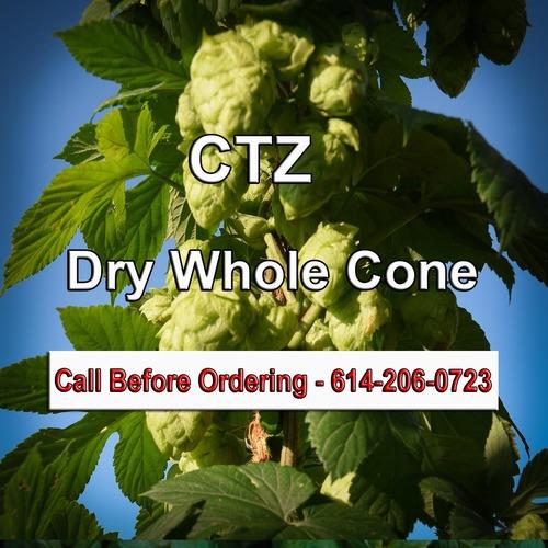 CTZWholeConePre-Dry copy.jpg