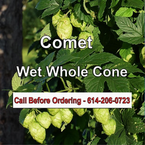 CometWholeConePre-Wet copy.jpg