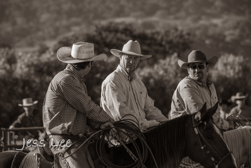 BlackandWhite-cowboy-photos-1678.jpg :: Photography of Cowboys processed in Black and White.