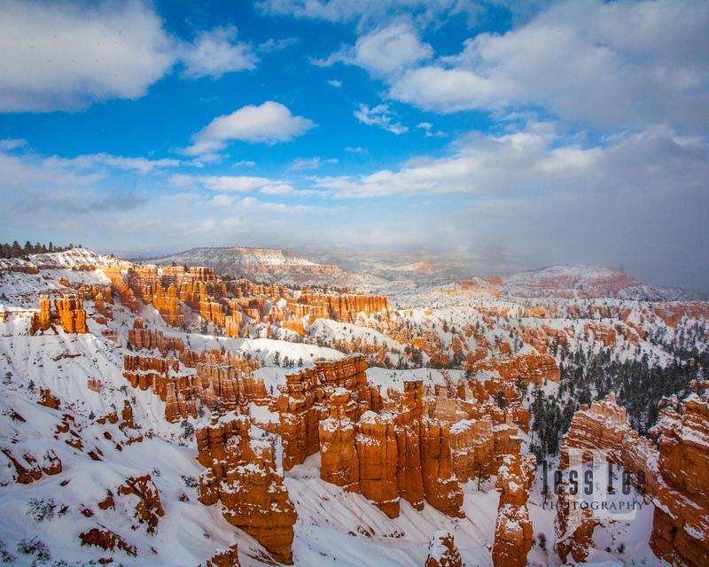 Bryce  Winter Snow--2.jpg