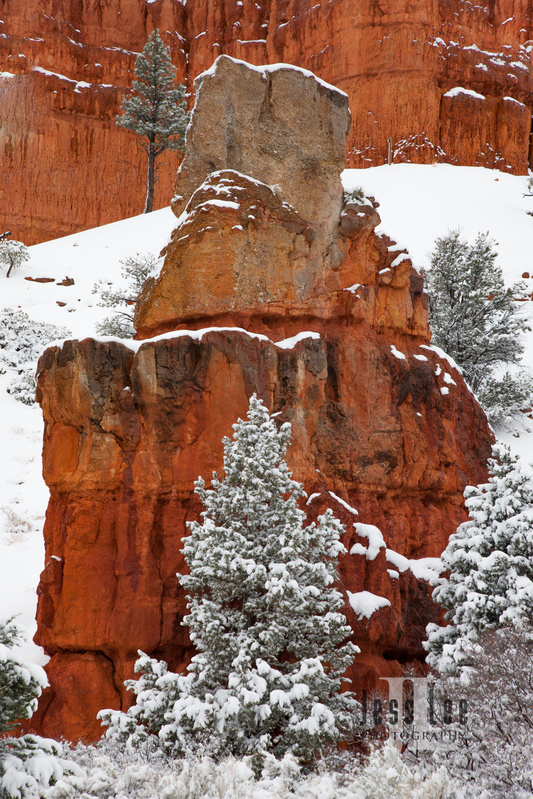 Bryce  Winter Snow-9753.jpg