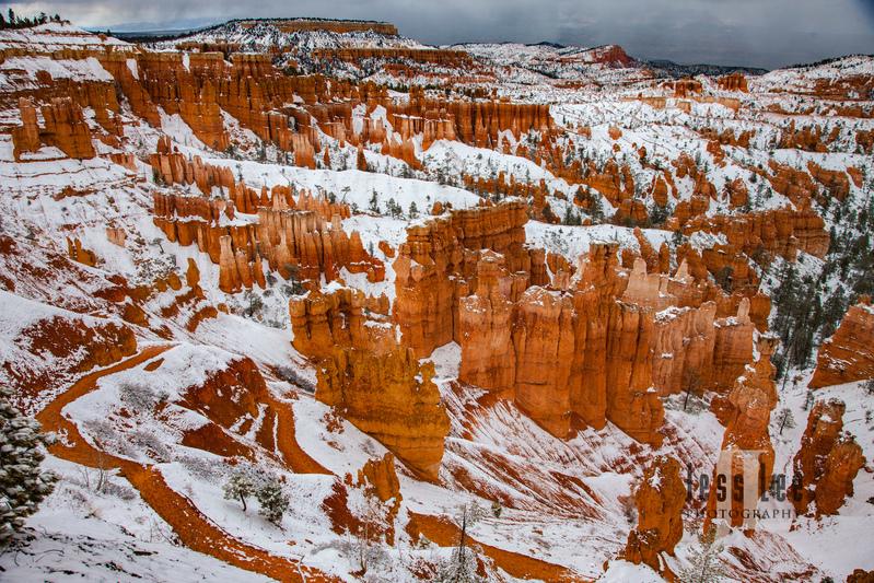 Bryce  Winter Snow-9787.jpg