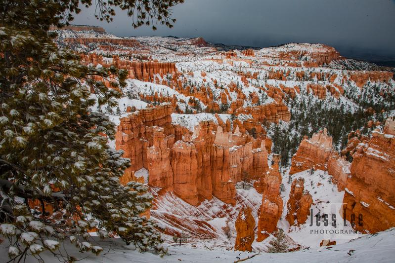 Bryce  Winter Snow-9848.jpg