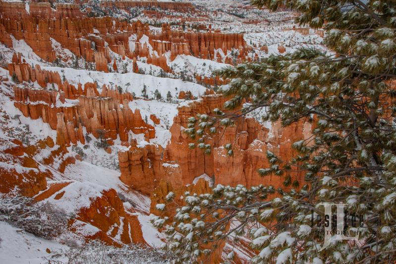 Bryce  Winter Snow-9864.jpg
