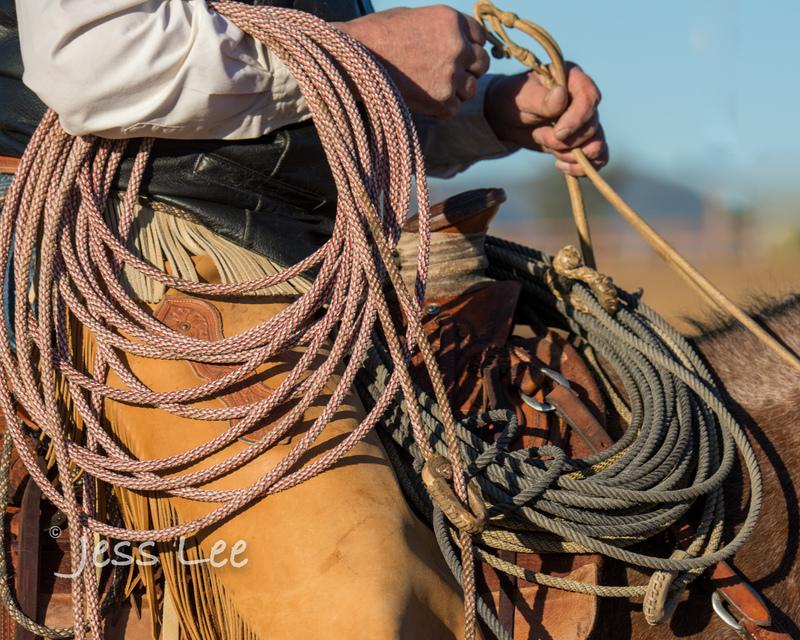 Californio-vaquaro-photos-1289.jpg :: Cowboys carring on the traditions of the Vaquero, Californios, Buckaroo ways.