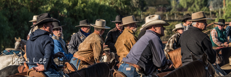 Californio-vaquaro-photos-1350.jpg :: Cowboys carring on the traditions of the Vaquero, Californios, Buckaroo ways.