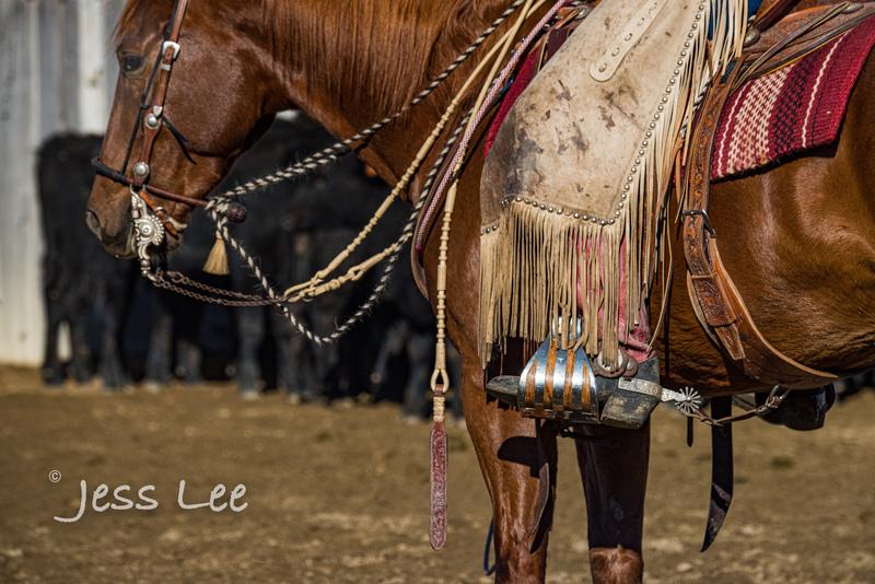 Californio-vaquaro-photos-1411.jpg :: Cowboys carring on the traditions of the Vaquero, Californios, Buckaroo ways.
