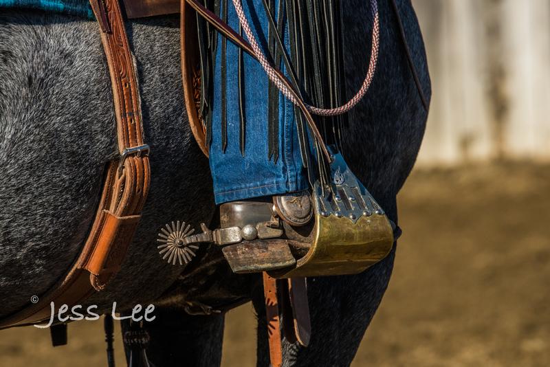 Californio-vaquaro-photos-1416(1).jpg :: Cowboys carring on the traditions of the Vaquero, Californios, Buckaroo ways.