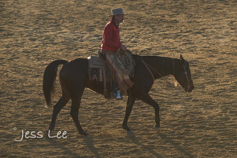 Californio-vaquaro-photos-1573(1).jpg :: Cowboys carring on the traditions of the Vaquero, Californios, Buckaroo ways.