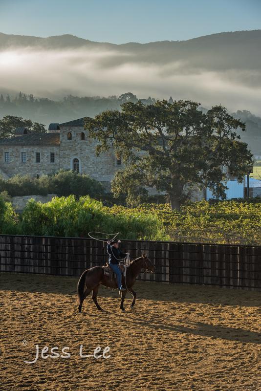 Californio-vaquaro-photos-1601(1).jpg :: Cowboys carring on the traditions of the Vaquero, Californios, Buckaroo ways.