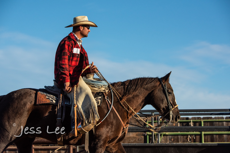 Californio-vaquaro-photos-1631(1).jpg :: Cowboys carring on the traditions of the Vaquero, Californios, Buckaroo ways.