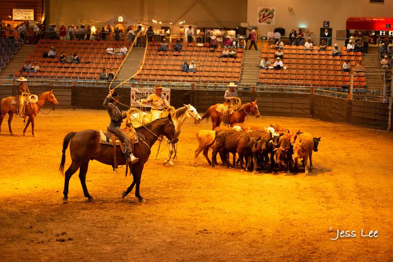 Californio-vaquaro-photos-1702.jpg :: Photos of the Califorinos Ranch roping, with some of the best Vaquero style cowboy in the world. Know as buckaroos, califorino's, and Vaqueros.