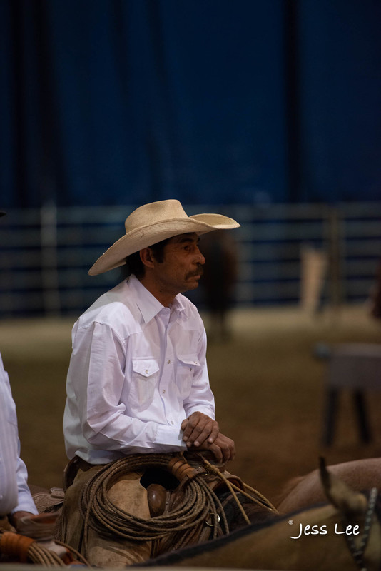 Californio-vaquaro-photos-1787.jpg :: Photos of the Califorinos Ranch roping, with some of the best Vaquero style cowboy in the world. Know as buckaroos, califorino's, and Vaqueros.