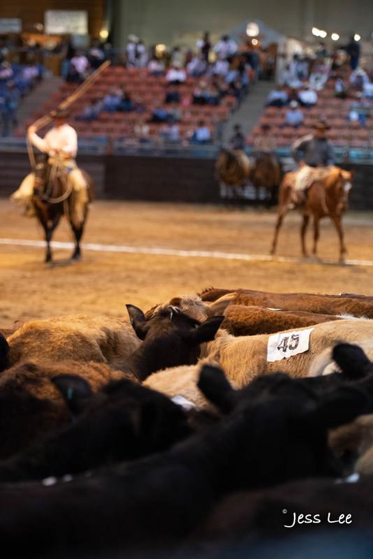 Californio-vaquaro-photos-1819.jpg :: Photos of the Califorinos Ranch roping, with some of the best Vaquero style cowboy in the world. Know as buckaroos, califorino's, and Vaqueros.