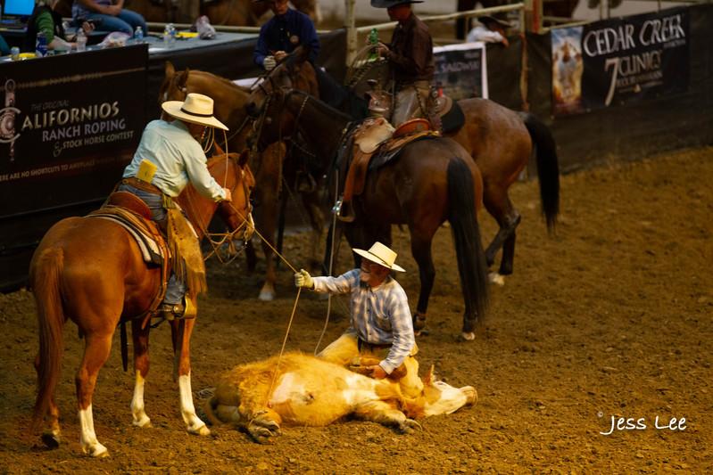Californio-vaquaro-photos-40823.jpg :: Photos of the Califorinos Ranch roping, with some of the best Vaquero style cowboy in the world. Know as buckaroos, califorino's, and Vaqueros.